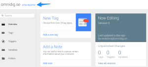 google-tag-manager-id